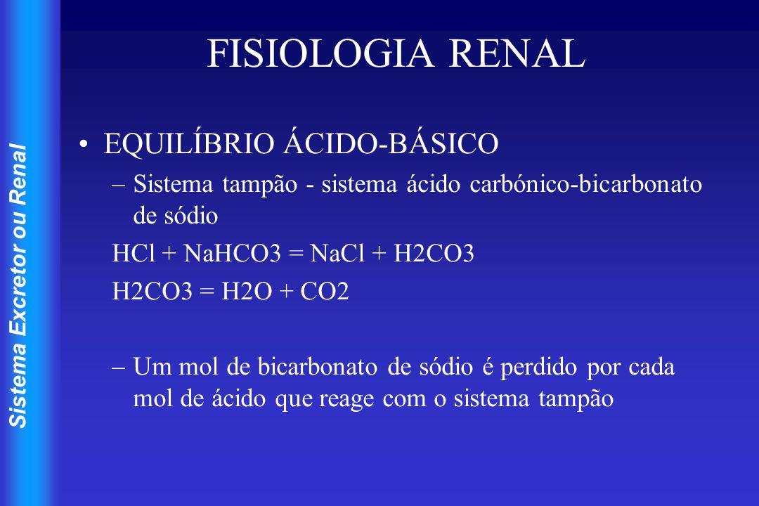 Sistema Excretor ou Renal FISIOLOGIA RENAL EQUILÍBRIO ÁCIDO-BÁSICO –As células renais produzem bicarbonato e iões hidrogénio pelo reverso da reacção do sistema tampão CO2 + H2O = H2CO3 = H + HCO3 –O hidrogénio é secretado por troca com sódio voltando este e o bicarbonato ao sangue restabelecendo a capacidade tamponante