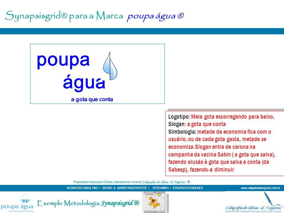 Exemplo Metodologia Synapsisgrid ® Logotipo: Meia gota escorregando para baixo, Slogan: a gota que conta Simbologia: metade da economia fica com o usu