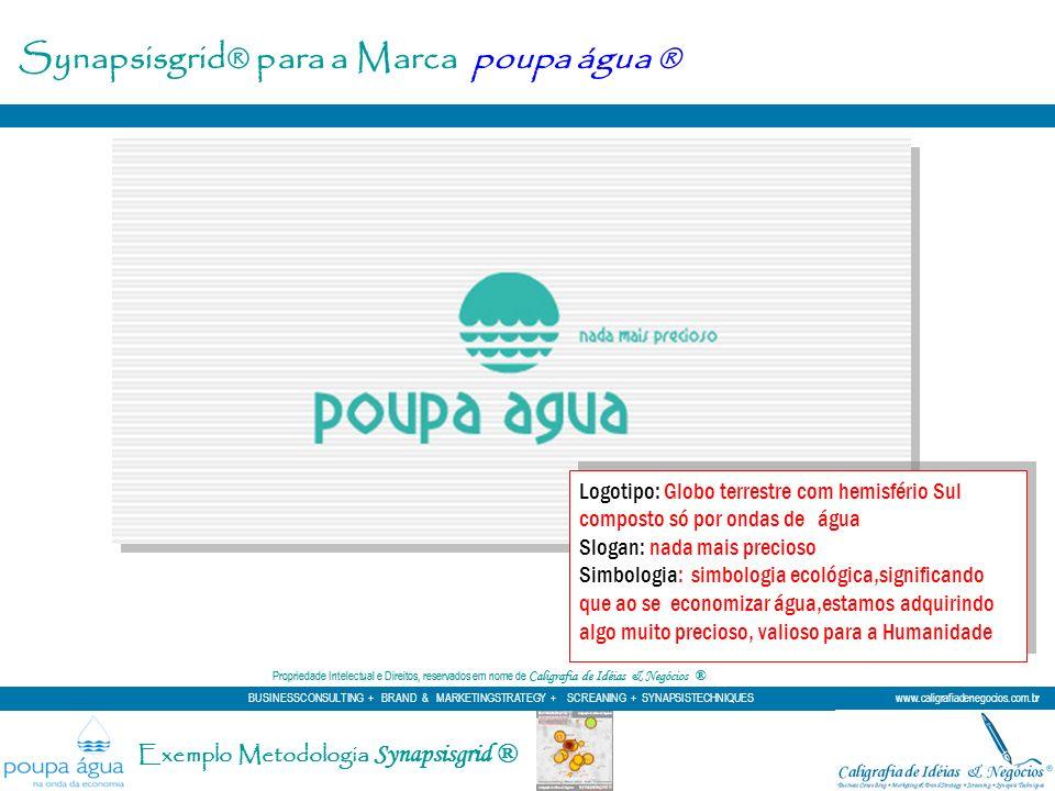 Synapsisgrid® para a Marca poupa água ® Logotipo: Globo terrestre com hemisfério Sul composto só por ondas de água Slogan: nada mais precioso Simbolog