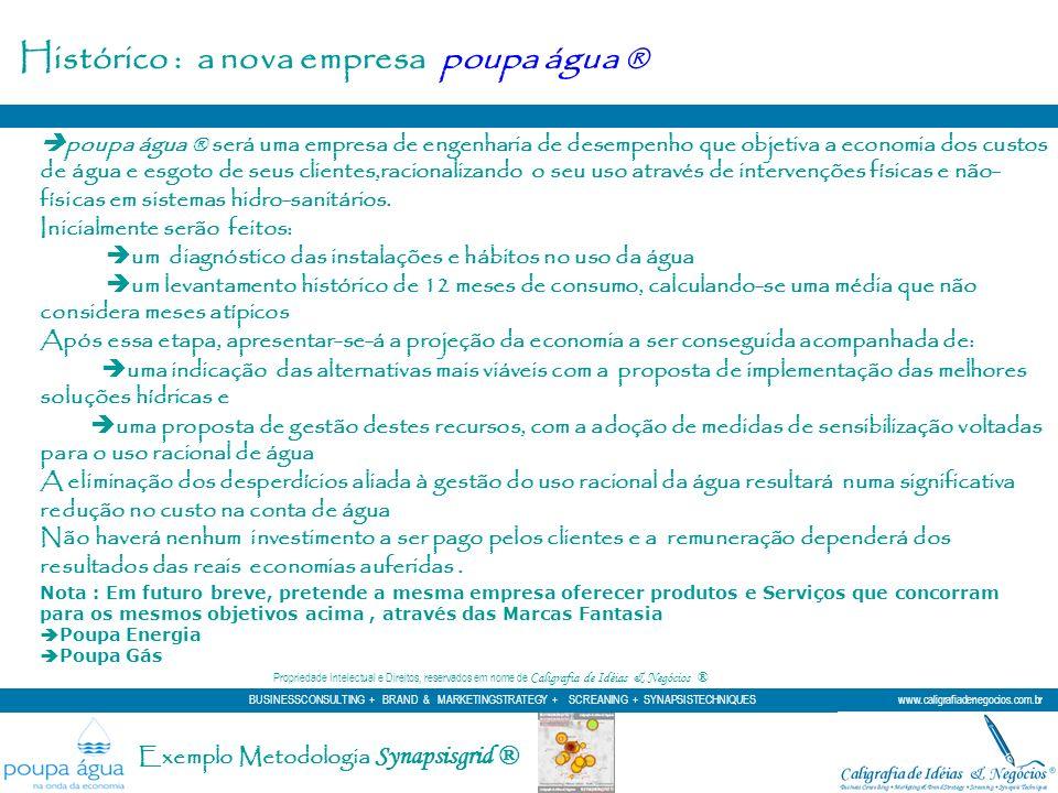 Exemplo Metodologia Synapsisgrid ® A Marca existe para expressar e identificar ou um produto, ou uma de suas qualificações, ou até a Missão da empresa.
