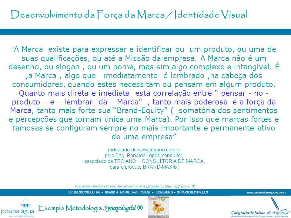 Exemplo Metodologia Synapsisgrid ® A Marca existe para expressar e identificar ou um produto, ou uma de suas qualificações, ou até a Missão da empresa