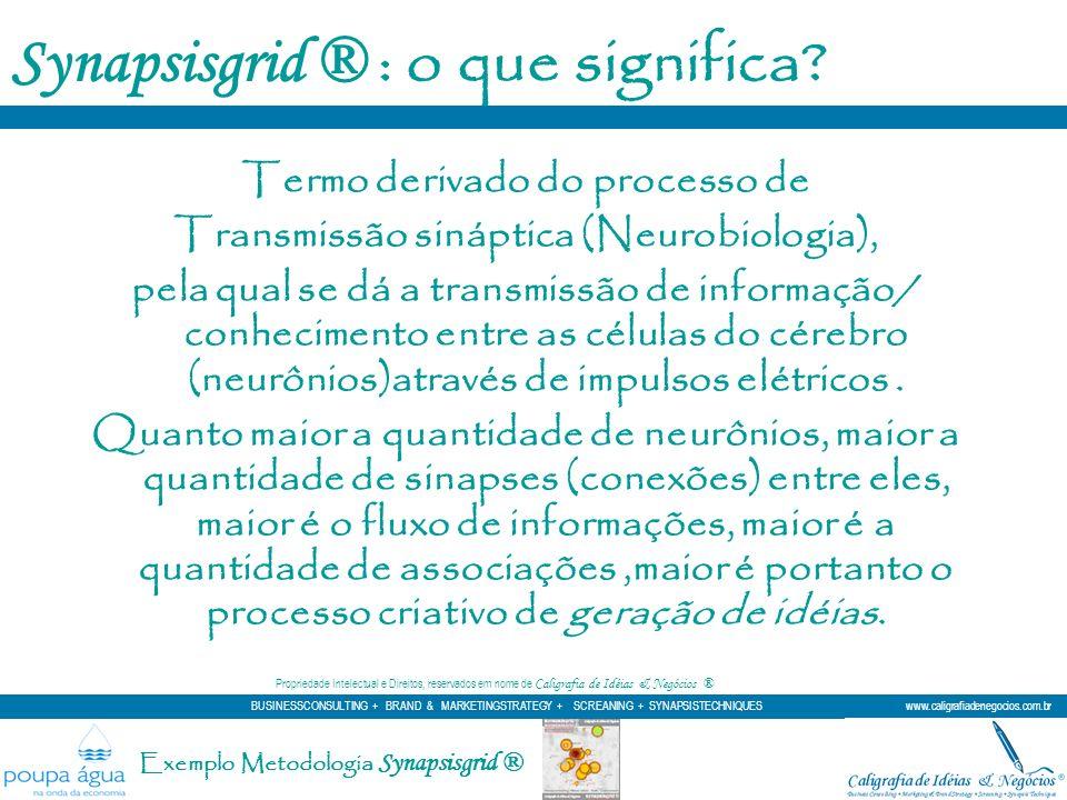 Termo derivado do processo de Transmissão sináptica (Neurobiologia), pela qual se dá a transmissão de informação/ conhecimento entre as células do cér