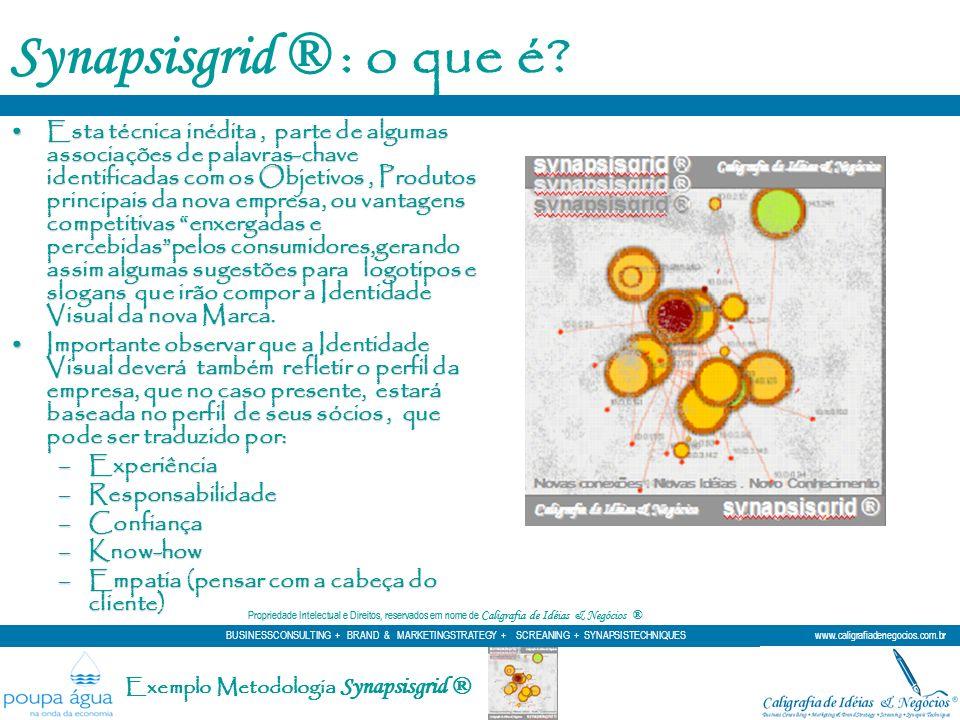 Synapsisgrid ® : o que é? Esta técnica inédita, parte de algumas associações de palavras-chave identificadas com os Objetivos, Produtos principais da