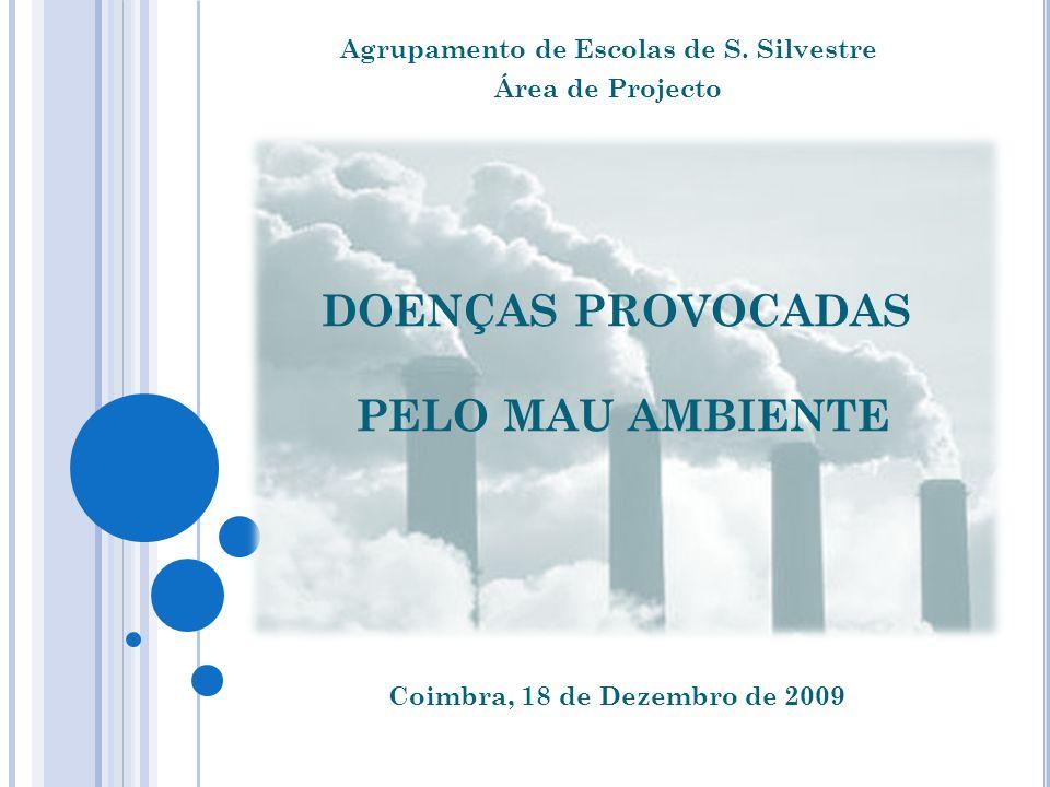 DOENÇAS PROVOCADAS PELO MAU AMBIENTE Agrupamento de Escolas de S. Silvestre Área de Projecto Coimbra, 18 de Dezembro de 2009