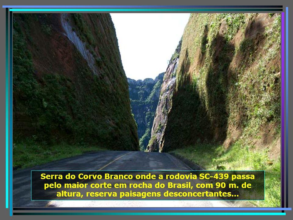 Com a topografia privilegiada de altas montanhas, córregos, arroios, riachos e rios, essa região é dominada por 88 cachoeiras e quedas dágua…