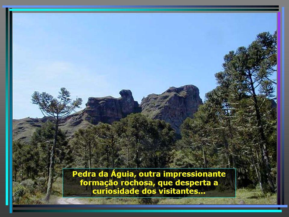 As belezas da serra geral, na Serra do Corvo Branco, contagiam qualquer visitante.