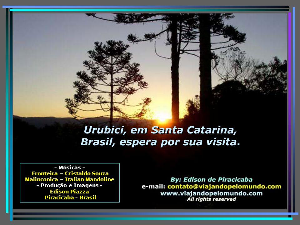 Como se não bastassem todos os encantos e belezas naturais de Urubici, na viagem de volta, o roteiro, se feito pela Serra do Rio do Rastro, com suas 2
