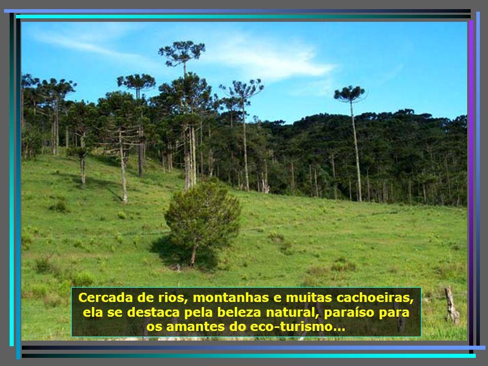 Localizada ao sul do estado, a 167 km de Florianópolis, a pequena cidade de Urubici é um tesouro cada dia mais visitado por turistas do Brasil e do mu