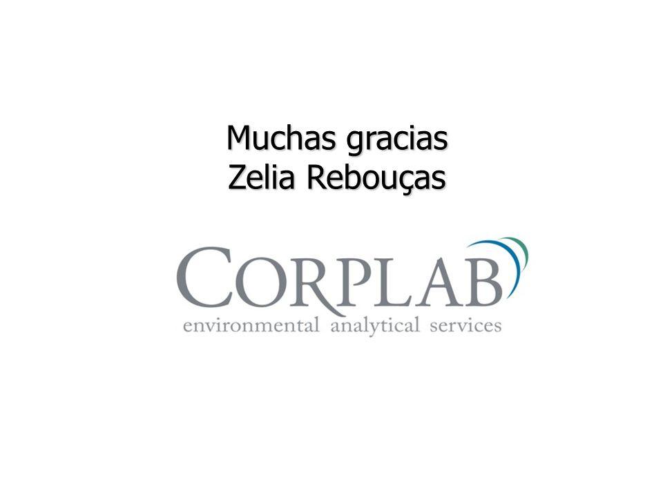 Muchas gracias Zelia Rebouças