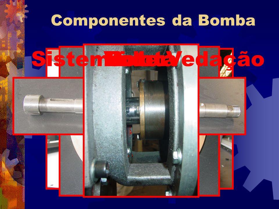 Componentes da Bomba Voluta Rotor Eixo Sistema de Vedação
