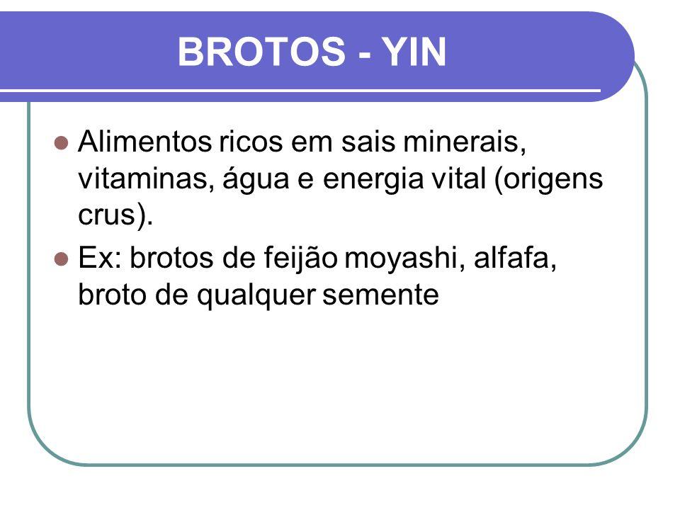 BROTOS - YIN Alimentos ricos em sais minerais, vitaminas, água e energia vital (origens crus). Ex: brotos de feijão moyashi, alfafa, broto de qualquer