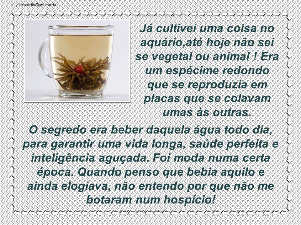 neydecastello@uol.com.br Depois soube que o cálcio do leite animal é importante para os ossos! Em quem acredito? Óbvio, o culpado era eu: -Você deve t