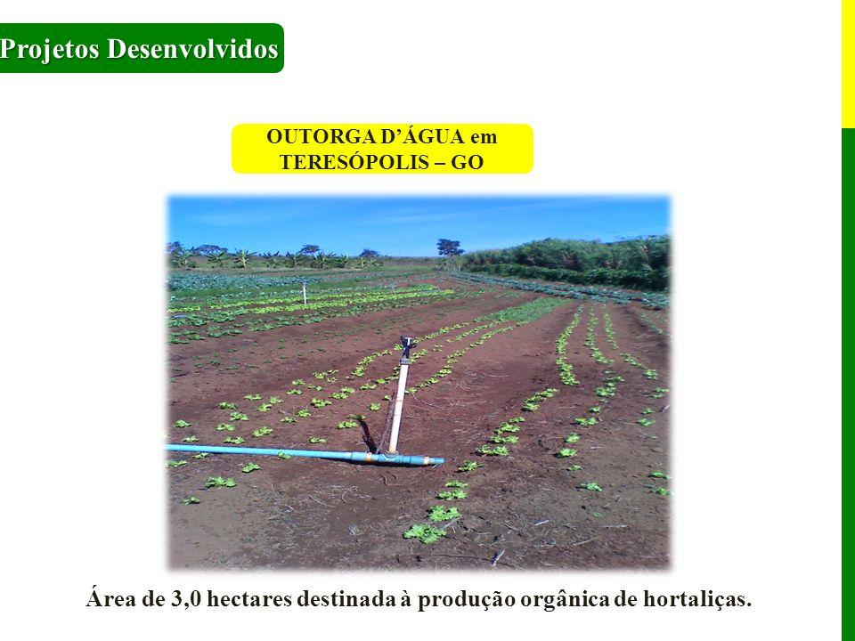 OUTORGA DÁGUA em TERESÓPOLIS – GO Projetos Desenvolvidos Área de 3,0 hectares destinada à produção orgânica de hortaliças.