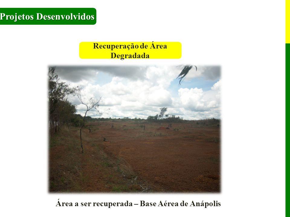 Recuperação de Área Degradada Projetos Desenvolvidos Área a ser recuperada – Base Aérea de Anápolis