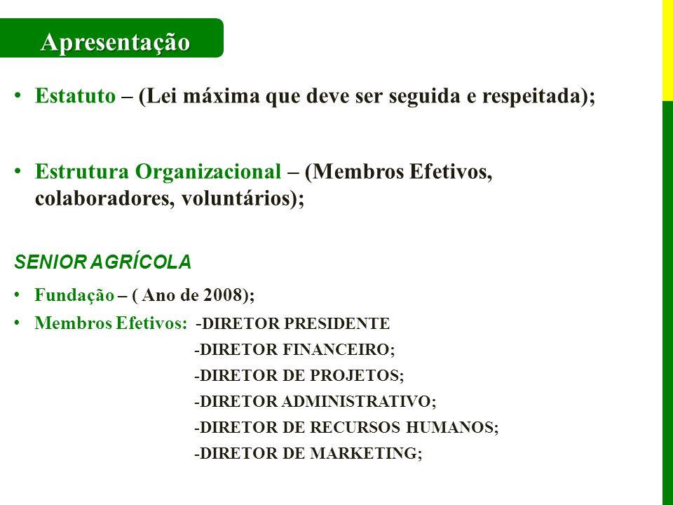 Estatuto – (Lei máxima que deve ser seguida e respeitada); Estrutura Organizacional – (Membros Efetivos, colaboradores, voluntários); SENIOR AGRÍCOLA Fundação – ( Ano de 2008); Membros Efetivos: - DIRETOR PRESIDENTE -DIRETOR FINANCEIRO; -DIRETOR DE PROJETOS; -DIRETOR ADMINISTRATIVO; -DIRETOR DE RECURSOS HUMANOS; -DIRETOR DE MARKETING; Apresentação