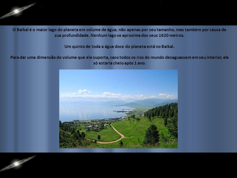 O Baikal é o maior lago do planeta em volume de água, não apenas por seu tamanho, mas também por causa de sua profundidade.
