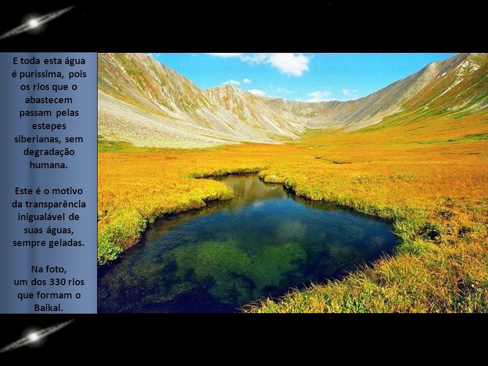 E toda esta água é puríssima, pois os rios que o abastecem passam pelas estepes siberianas, sem degradação humana.
