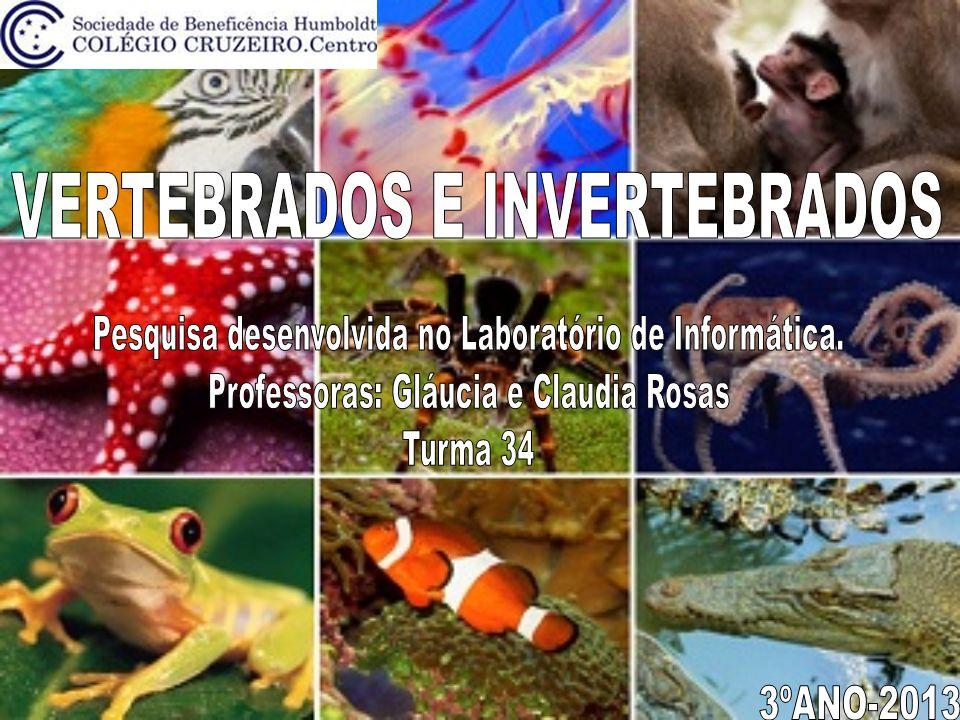MAMÍFERORÉPTILANFÍBIOAVEPEIXE NOMES:Theo Muniz e Daniela FariaTURMA:34 Os animais vertebrados são os seres vivos que possuem o organismo mais avançado em nosso planeta.