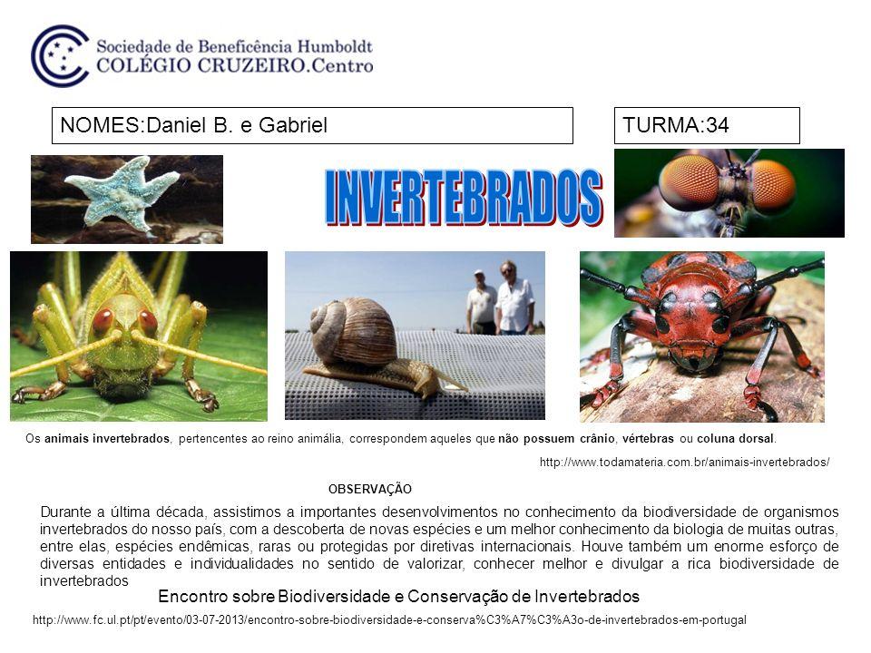 NOMES:Daniel B. e GabrielTURMA:34 Durante a última década, assistimos a importantes desenvolvimentos no conhecimento da biodiversidade de organismos i