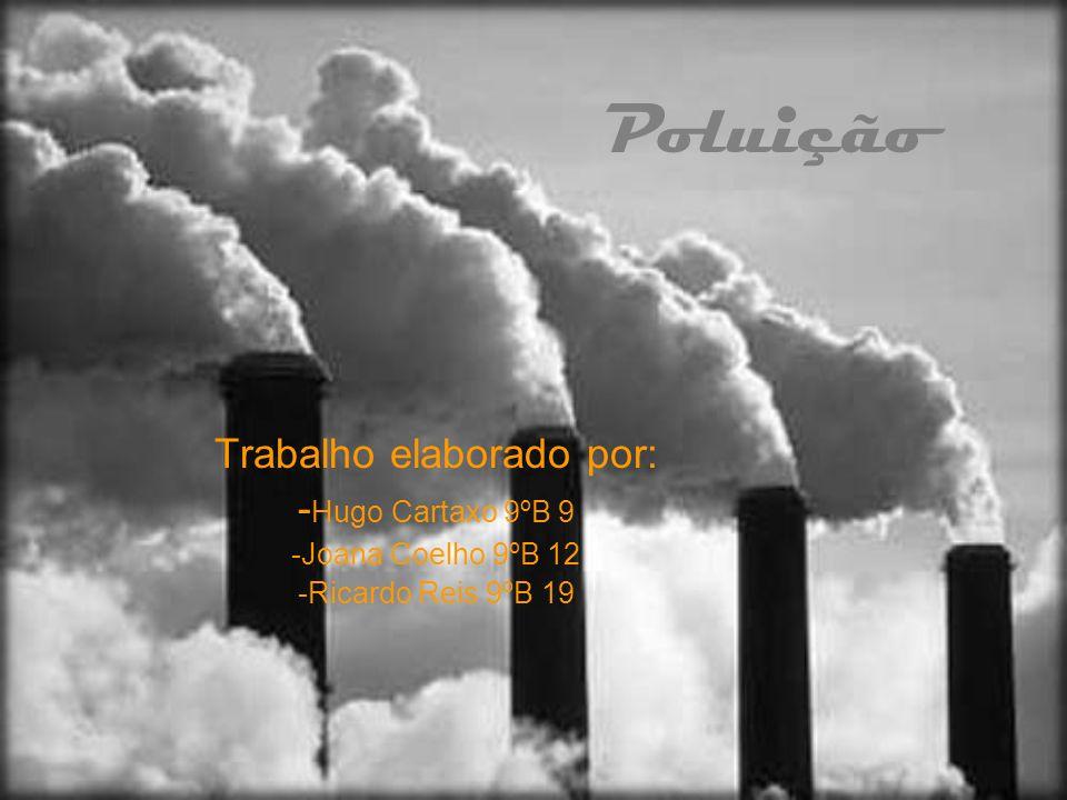 Poluição Trabalho elaborado por: - Hugo Cartaxo 9ºB 9 -Joana Coelho 9ºB 12 -Ricardo Reis 9ºB 19