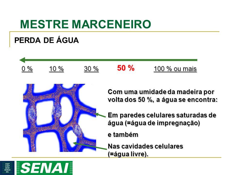 MESTRE MARCENEIRO 50 % Com uma umidade da madeira por volta dos 50 %, a água se encontra: Em paredes celulares saturadas de água (=água de impregnação) e também Nas cavidades celulares (=água livre).