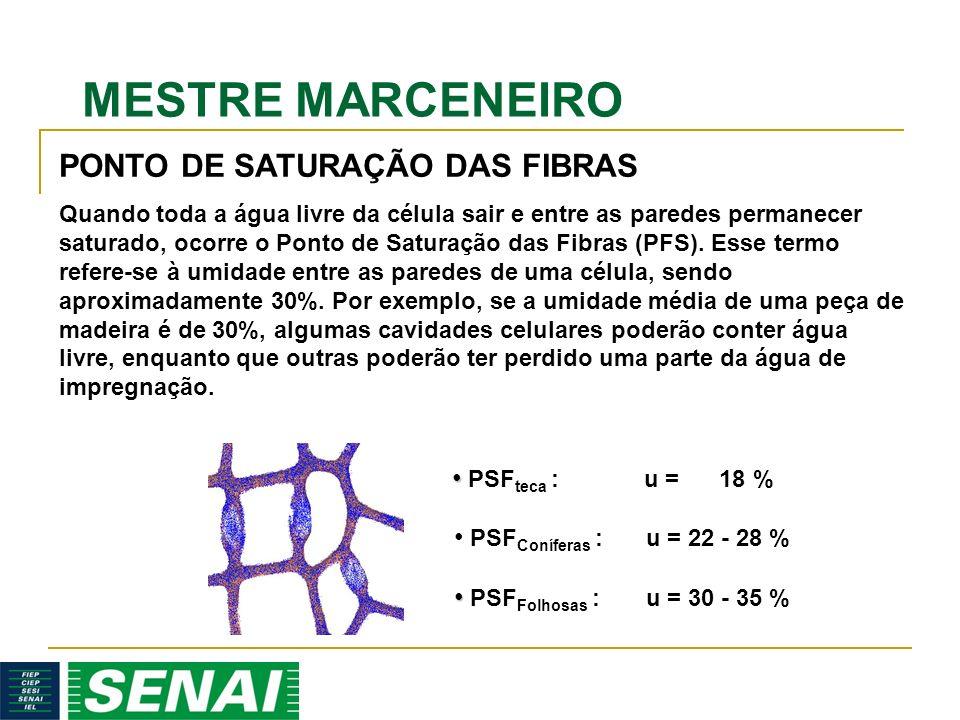 MESTRE MARCENEIRO Quando toda a água livre da célula sair e entre as paredes permanecer saturado, ocorre o Ponto de Saturação das Fibras (PFS).