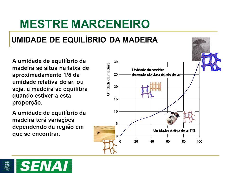 MESTRE MARCENEIRO A umidade de equilíbrio da madeira se situa na faixa de aproximadamente 1/5 da umidade relativa do ar, ou seja, a madeira se equilibra quando estiver a esta proporção.