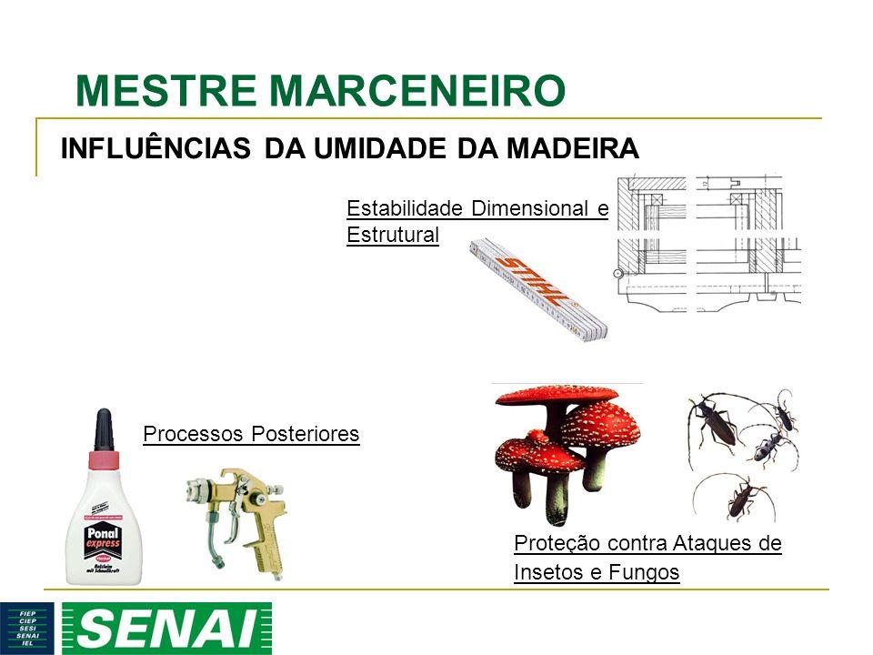MESTRE MARCENEIRO Estabilidade Dimensional e Estrutural Processos Posteriores Proteção contra Ataques de Insetos e Fungos INFLUÊNCIAS DA UMIDADE DA MADEIRA