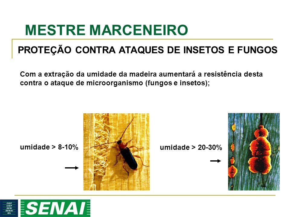MESTRE MARCENEIRO PROTEÇÃO CONTRA ATAQUES DE INSETOS E FUNGOS umidade > 20-30% umidade > 8-10% Com a extração da umidade da madeira aumentará a resistência desta contra o ataque de microorganismo (fungos e insetos);