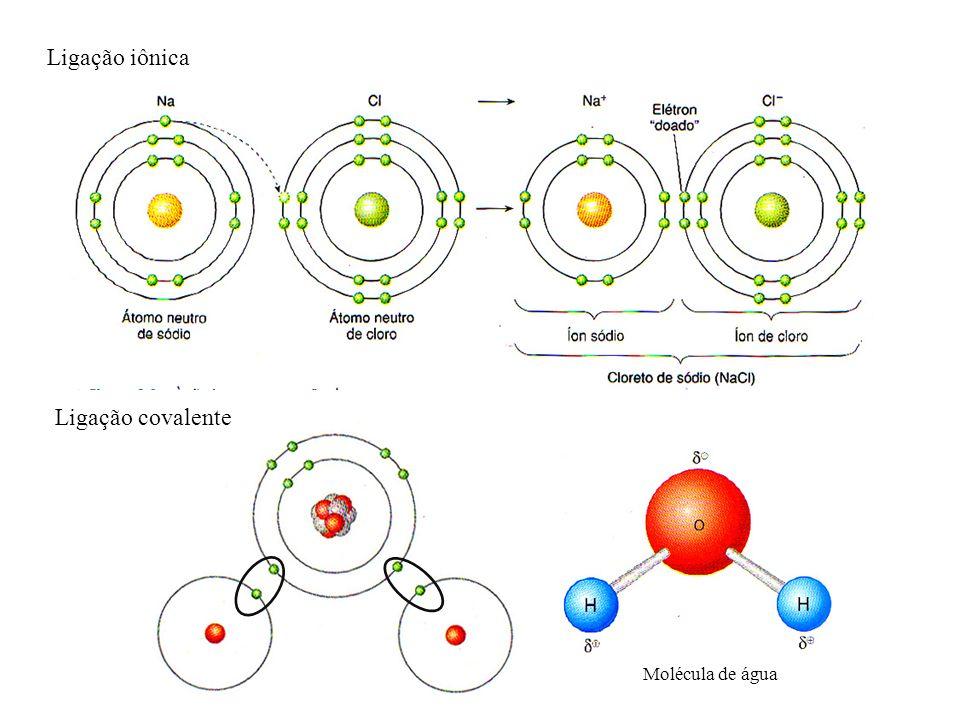 Ligação iônica Ligação covalente Molécula de água