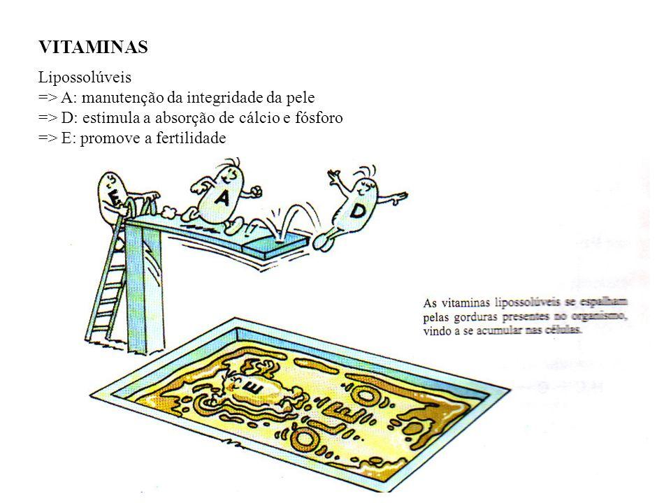 VITAMINAS Lipossolúveis => A: manutenção da integridade da pele => D: estimula a absorção de cálcio e fósforo => E: promove a fertilidade