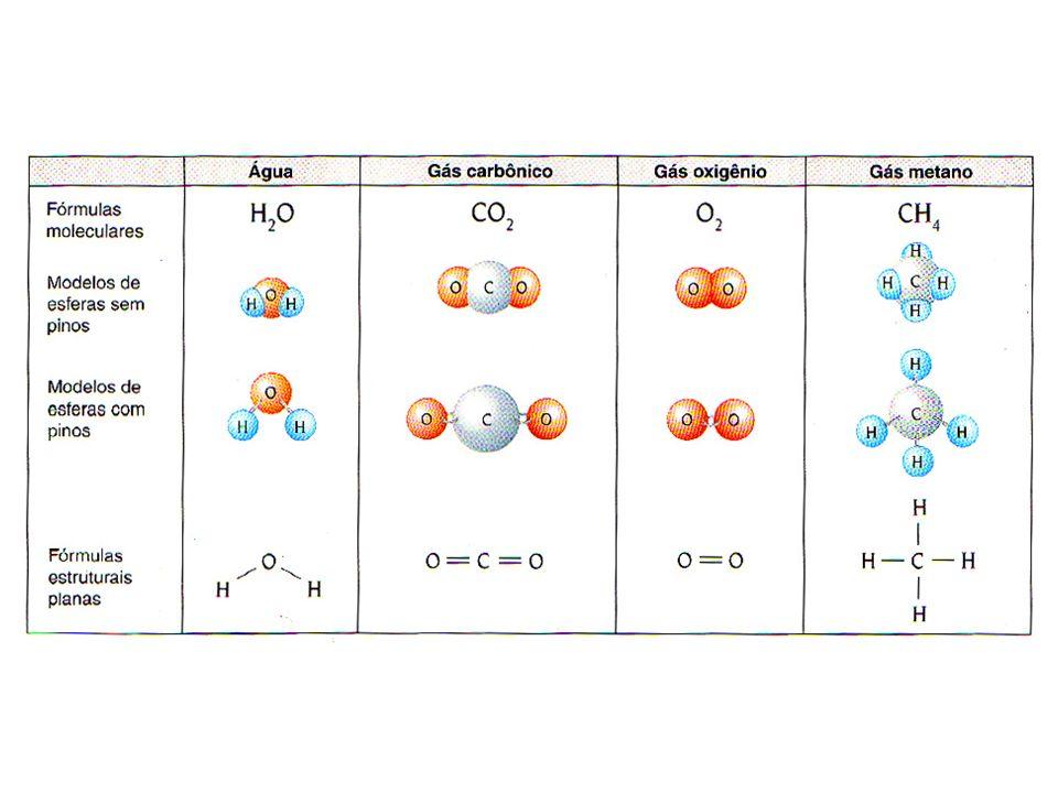 COMPOSIÇÃO QUÍMICA DOS SERES VIVOS Nutrientes inorgânicos:Nutrientes orgânicos: Água Sais minerais Proteínas Lipídios (gorduras) Carboidrados (glicídios) Ácidos nucléicos (DNA/RNA) Vitaminas Água: preenche 80% da célula Funções: Participa das reações químicas Veículo de transporte de substâncias Moderador da temperatura