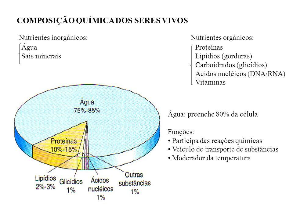 COMPOSIÇÃO QUÍMICA DOS SERES VIVOS Nutrientes inorgânicos:Nutrientes orgânicos: Água Sais minerais Proteínas Lipídios (gorduras) Carboidrados (glicídi
