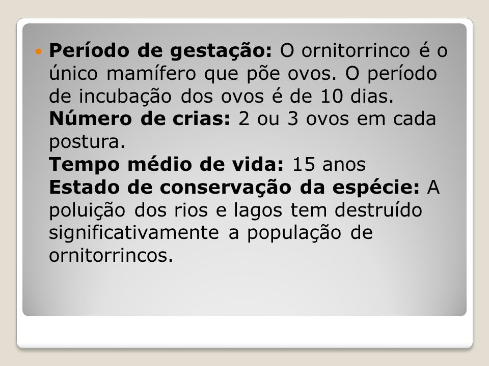 Conservação O ornitorrinco é classificado pela IUCN (2008) como pouco preocupante.