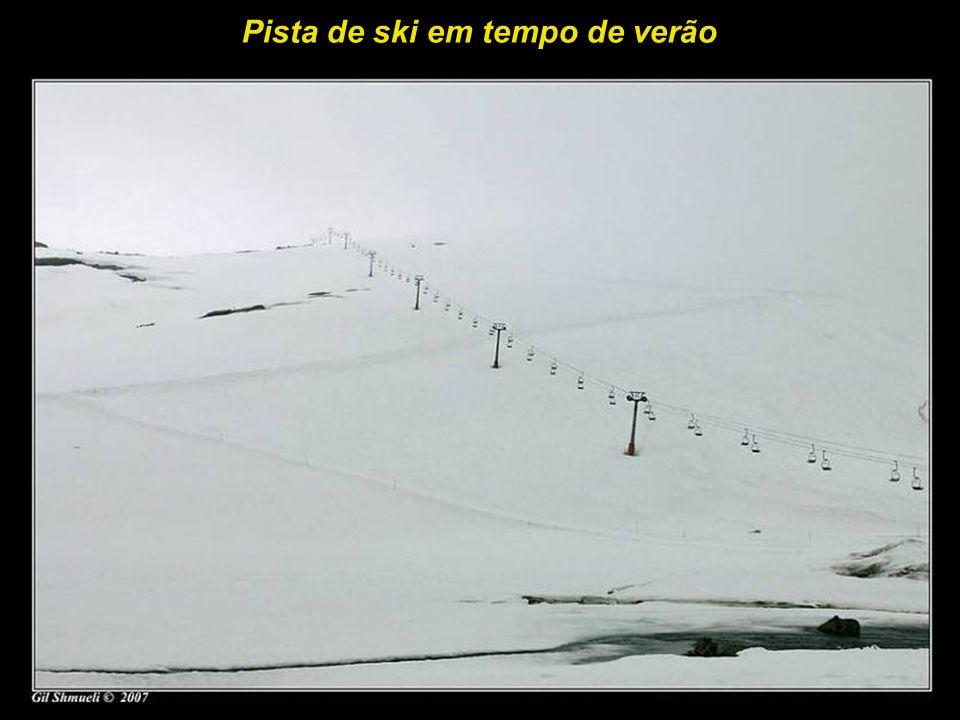 Uma escola de ski em tempo de verão