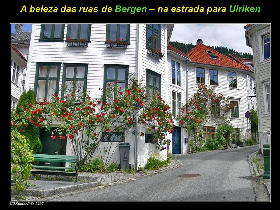 Vista panorâmica da cidade de Bergen