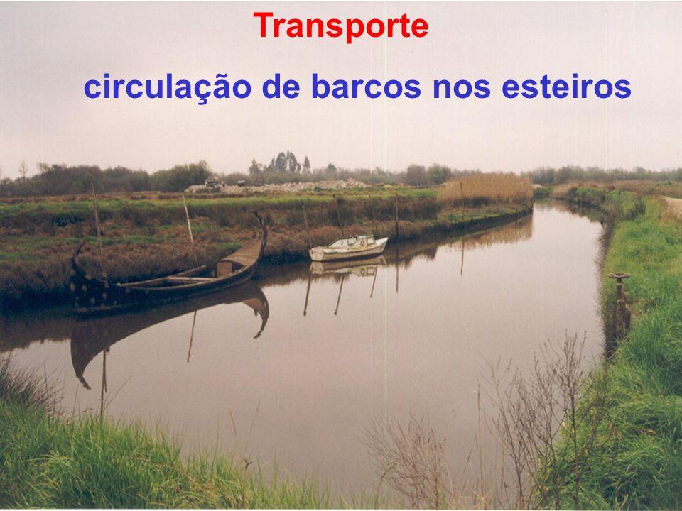 PROJECTO : sistema de defesa contra marés sistema primário de drenagem infra-estruturas rurais secundárias de rega, drenagem rede viária restruturação fundiária estrutura verde de compartimentação da paisagem