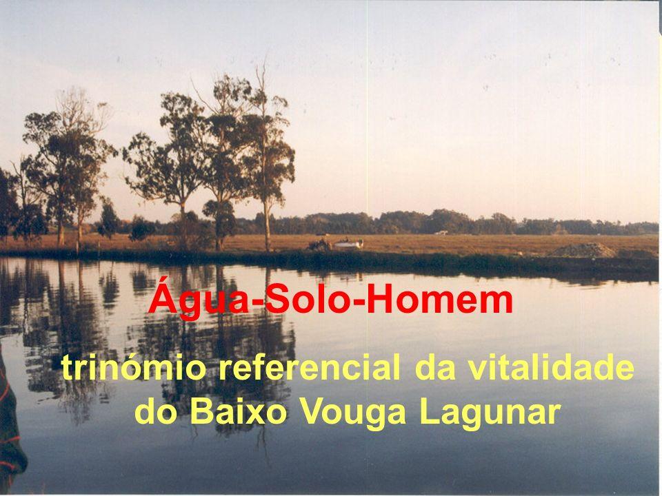 O Estudo de Impacte Ambiental defende que a sustentabilidade do Baixo Vouga Lagunar deve contemplar uma estratégia de monitorização integradora água e solo diversidade biológica paisagem