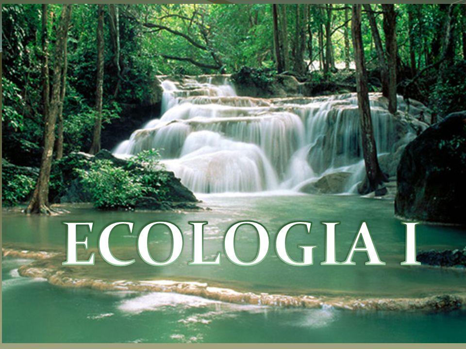 Termo Ecologia ( oikos, casa e logos, estudo ), Usado em 1866 – Ernst Haeckel.