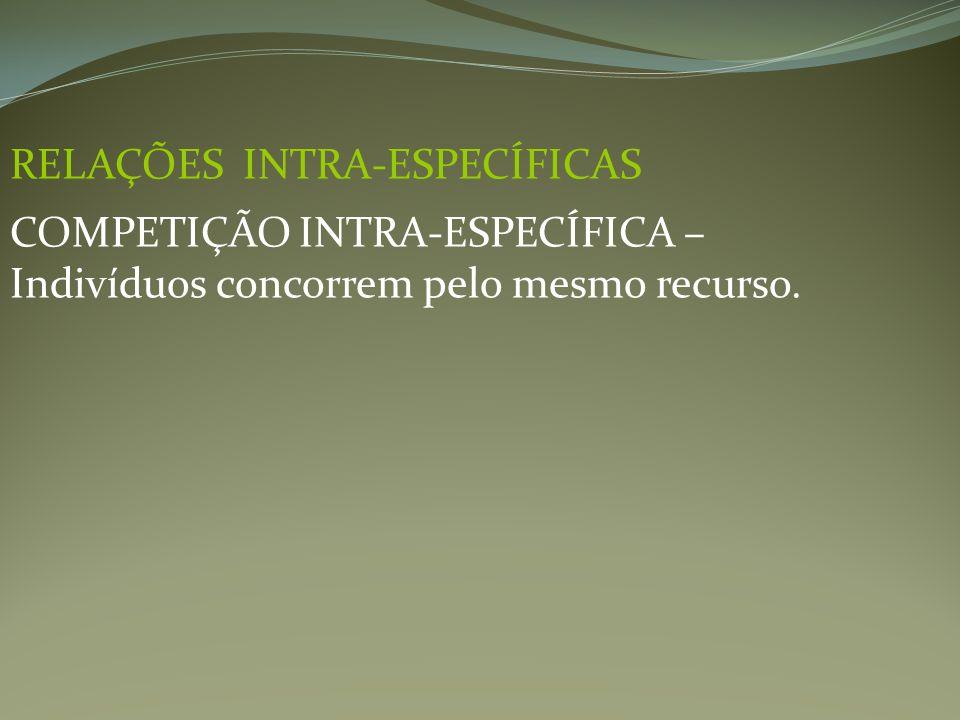 RELAÇÕES INTRA-ESPECÍFICAS COMPETIÇÃO INTRA-ESPECÍFICA – Indivíduos concorrem pelo mesmo recurso.