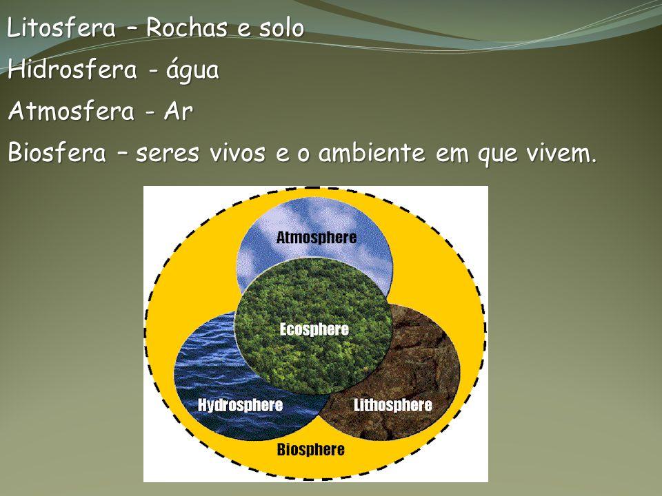 Litosfera – Rochas e solo Hidrosfera - água Atmosfera - Ar Biosfera – seres vivos e o ambiente em que vivem.
