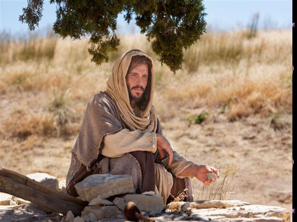 No entanto, as dificuldades da caminhada não são um castigo ou uma derrota; são, tantas vezes, parte dessa pedagogia de Deus para nos forçar a ir mais