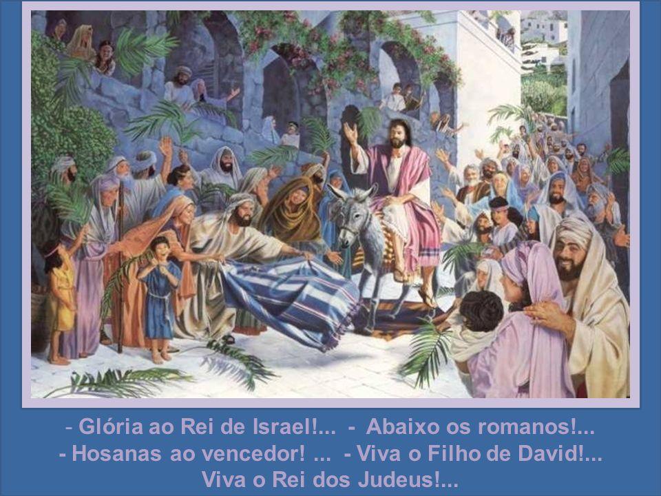 Quando Jesus entrou vitoriosamente em Jerusalém, montado num burrico, eis que o povo, alvoroçado, vinha vê-lo e saudá-lo na praça pública.