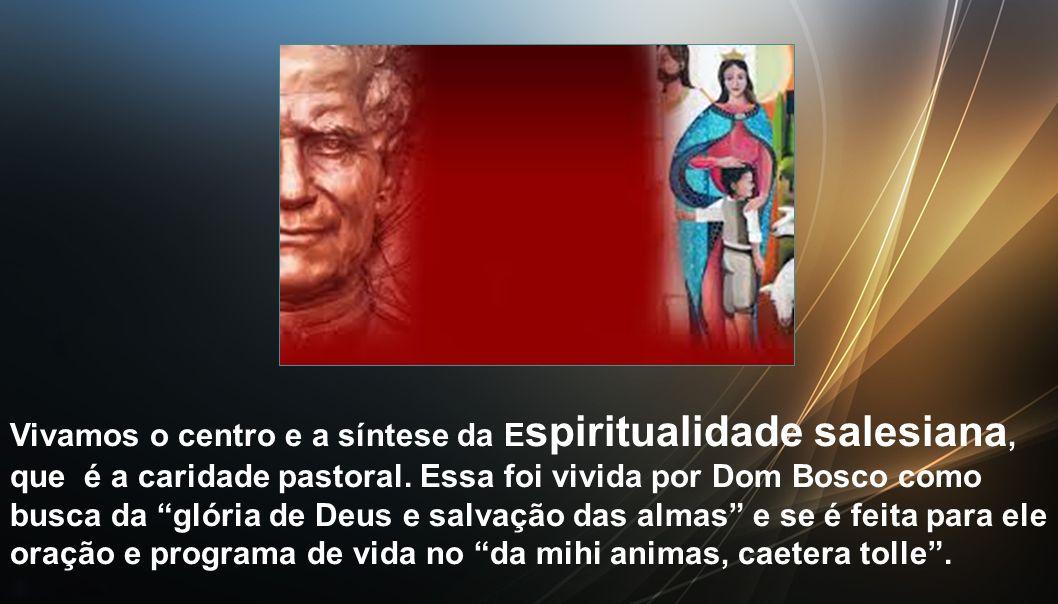 Empenhemo-nos a aprofundar qual foi a experiência espiritual de Dom Bosco, o seu perfil espiritual, para descobrir o Dom Bosco místico; poderemos assim imitá-lo, vivendo uma experiência espiritual com identidade carismática.