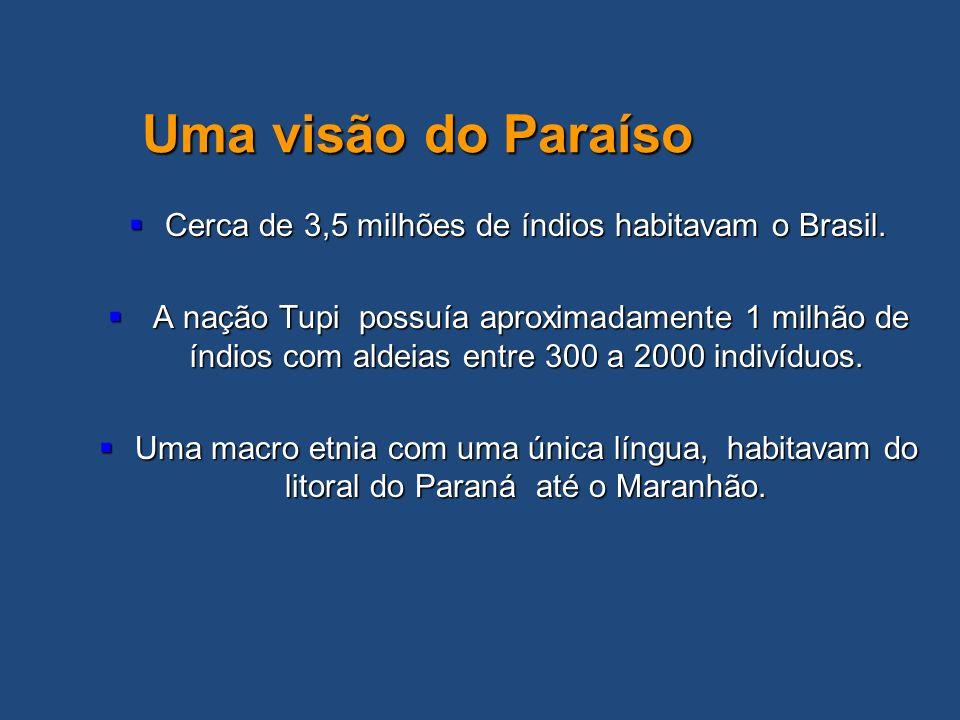 Cerca de 3,5 milhões de índios habitavam o Brasil. Cerca de 3,5 milhões de índios habitavam o Brasil. A nação Tupi possuía aproximadamente 1 milhão de