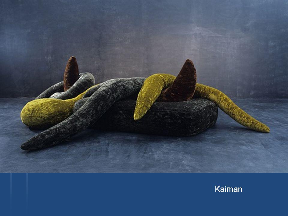 Kaiman