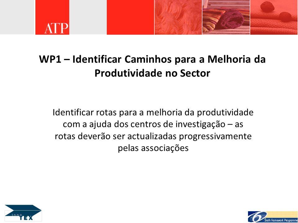 WP1 – Identificar Caminhos para a Melhoria da Produtividade no Sector Identificar rotas para a melhoria da produtividade com a ajuda dos centros de in