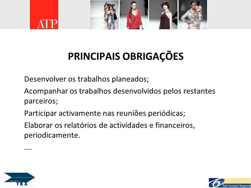 PRINCIPAIS OBRIGAÇÕES Desenvolver os trabalhos planeados; Acompanhar os trabalhos desenvolvidos pelos restantes parceiros; Participar activamente nas