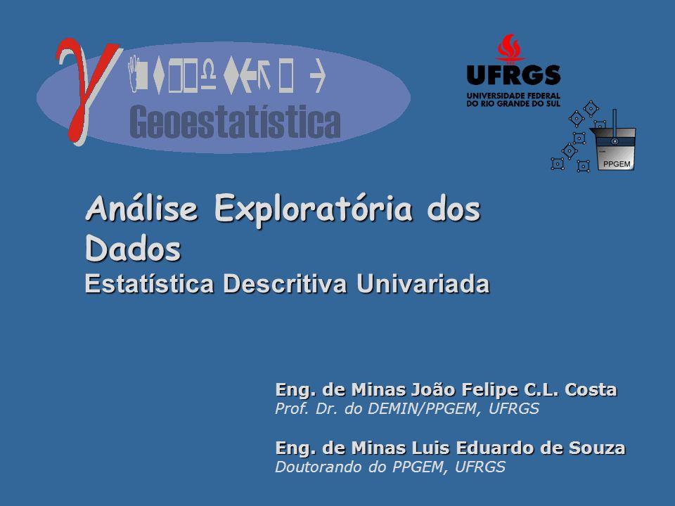 Análise Exploratória dos Dados Estatística Descritiva Univariada Eng. de Minas João Felipe C.L. Costa Prof. Dr. do DEMIN/PPGEM, UFRGS Eng. de Minas Lu