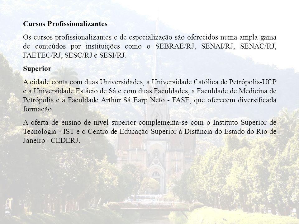 Cursos Profissionalizantes Os cursos profissionalizantes e de especialização são oferecidos numa ampla gama de conteúdos por instituições como o SEBRA